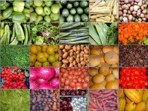 """Program """"Tekući prijenosi za poticaje u poljoprivrednoj proizvodnji i ruralnom razvitku"""" ŽZH"""